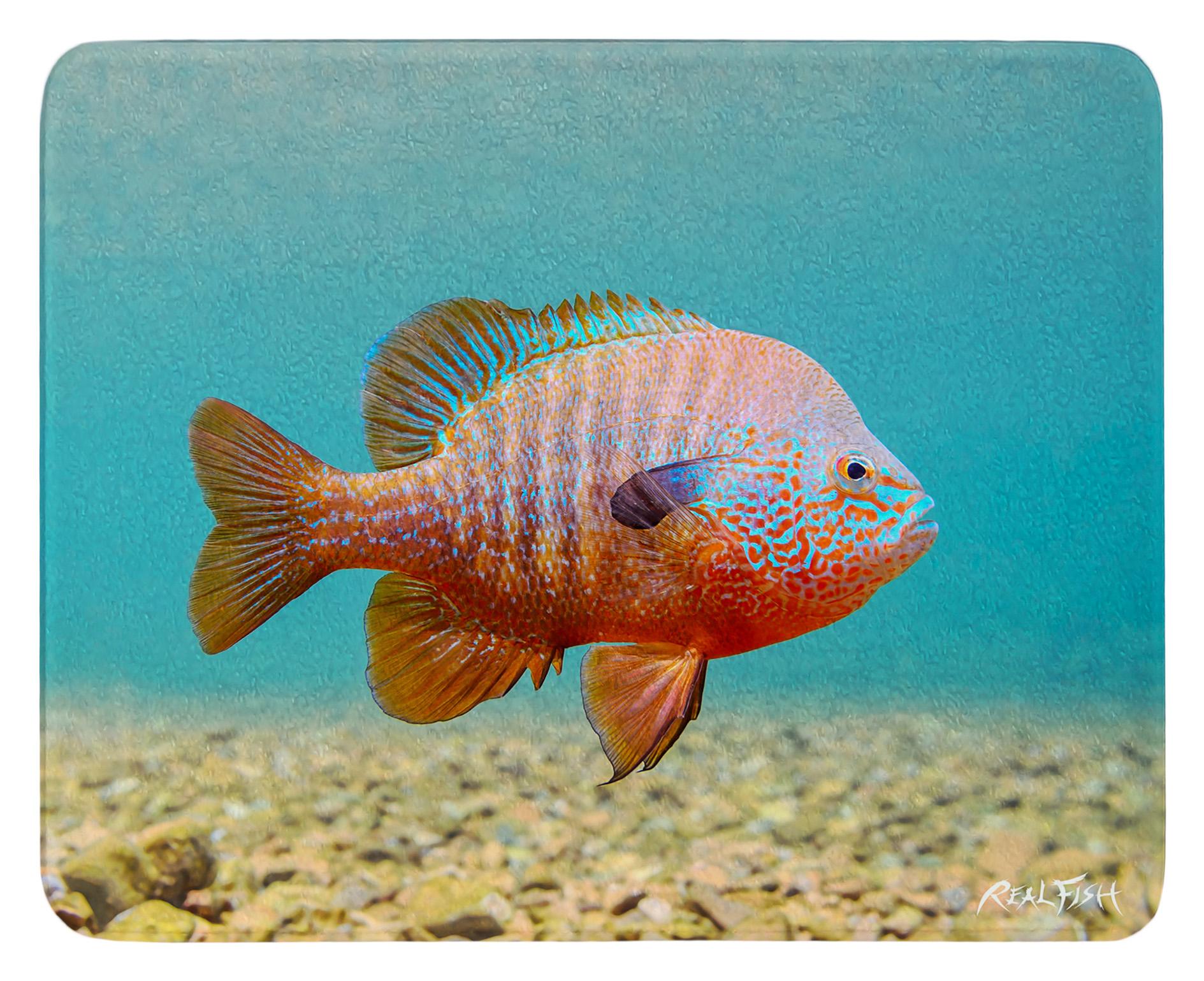 aa58bfc2eb95 12 x 15 Cutting Board - Longear Sunfish